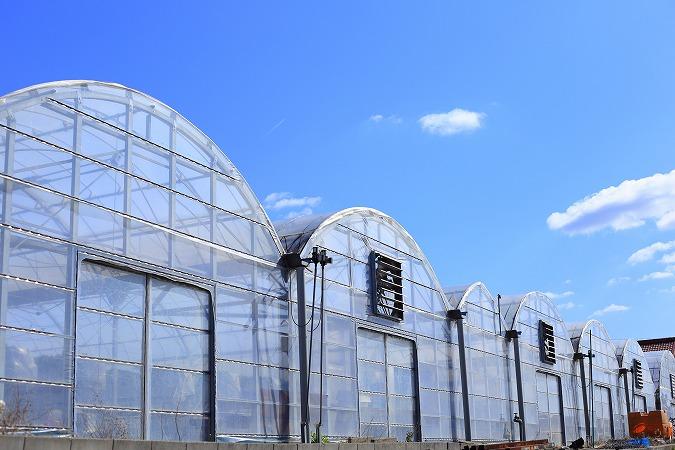 農業用ビニールハウス新設・メンテナンスの魅力とは
